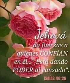 Jehovah S Witnesses, Catholic Religion, Good Morning Quotes, Encouragement Quotes, Faith, God, Amen, Hollywood, Animal