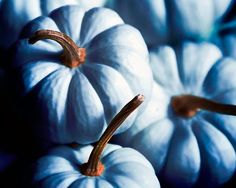 Blue pumpkins (photography) #jackolantern #autumn by Raceytay