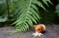Needle Felted Hamster - Miniature Baby Syrian Amigurumi Animal Soft Sculpture. $26.00, via Etsy.