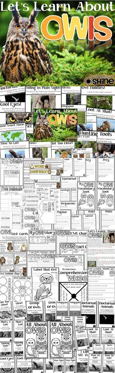 Owls Unit. Everything you need for your owls unit! Fact book/slide show, close read, student reader, owl vocabulary, writing activities, owl pellet dissection, interactive notebooks pages, vocabulary game, craftivity, and more!