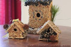 How to make bird seed covered bird houses.
