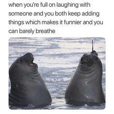 40 Memes To Make You LOL
