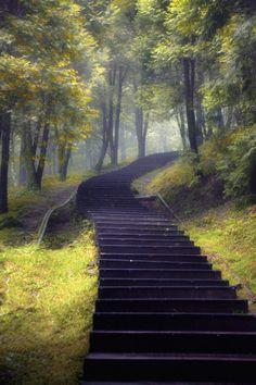 "favorite-season: "" Long Stairs by Hanson Mao """