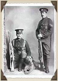 Sentry Duty 1st World War    Not long after the First World War the Airedale rose in popularity quickly from stories of their bravery on the battlefield.