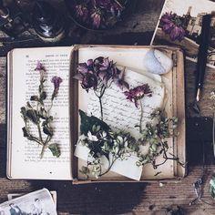 Pinterest: mia ☾  Wicca, witchcraft, magic