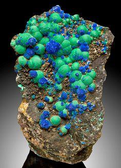 Gorgeous mix of smooth Malachite spherules with crystalline Azurite balls on Goethite