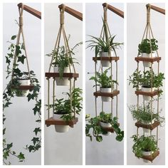 Hanging planter indoor wall planter indoor garden plant etsy a bit self help guide to a lovely garden Indoor Planters, Outdoor Plants, Hanging Planters, Hanging Wall Planters Indoor, Indoor Plant Wall, Hanging Plant Wall, Hanging Herbs, Concrete Planters, Air Plants