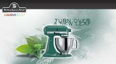 I just took the KitchenAid Colourology quiz and discovered that I'm Bay Leaf, because I'm most at home in the great outdoors. What's your colour?