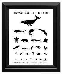 Image result for hawaiian eye chart