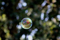 Soap bubble. Photo by Chris Parlow, Vancouver, BC.