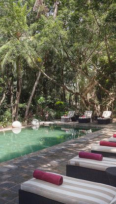 The inviting pool is surrounded by lush tropical gardens. #Indistay | The Wallawwa, Sri Lanka