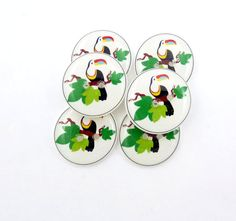 Toucan Buttons. 6 Handmade Buttons.  Tropical by buttonsbyrobin, $11.99