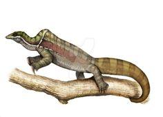 Drepanosaurus unguicaudatus