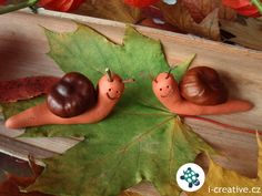 Conker hunting is fun, but what do you do once you've harvested them? You need this craft using conkers - check these cute critters! Animal Crafts For Kids, Fun Crafts For Kids, Preschool Crafts, Diy For Kids, Nature Crafts, Fall Crafts, Autumn Activities, Activities For Kids, Conkers Craft
