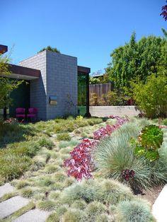 An abstract interpretation of a creek using ornamental grasses as a front yard lawn alternative.