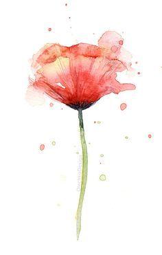 Acuarela Amapola Roja estampado de arte flores amapolas