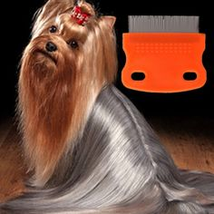 Wish | Flea Comb For Dog Steel Brush Hair Metal Comb Dog Grooming Trimmer Cute Pet Cat Dog Comb Color Random