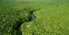 Comissão aprova inclusão de custo amazônico em obras do Minha Casa, Minha Vida