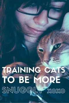 Cats are full of fast thinking, purring, and graceful movements. Those are the benefits of owning a cat. Owning a cat isn't all fun and games, though; I Love Cats, Cool Cats, Cat Anime, Cat Care Tips, Pet Care, Pet Tips, Kitten Care, Owning A Cat, Cat Behavior