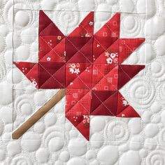 Quilting It Quilting 101, Quilting For Beginners, Free Motion Quilting, Machine Quilting, Quilting Designs, Quilting Ideas, Quilts Canada, Quilt Patterns, Leaf Patterns