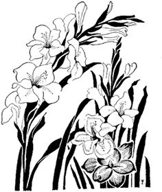 Sketches of Flowers: Draw With Feeling To Create a Stunning Display