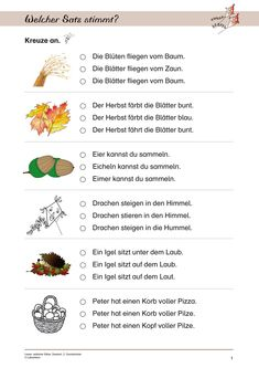 15 Sachunterricht Grundschule   Bathroom   Pinterest ...