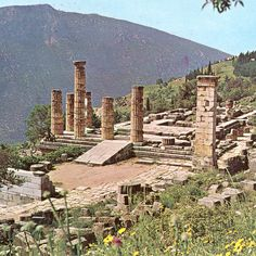 43 Best DELPHI Greece images