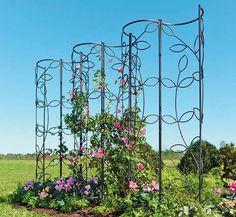 Garden Obelisk Trellis – Ideas on Foter - Alles über den Garten