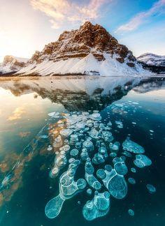 En esencia, estas bolsas de aire bajo el agua del reunieron con frío extremo y se convirtieron congelado en sus pistas.
