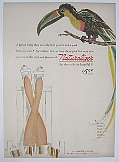 1944 Naturalizer With A Lovely Colored Parrot