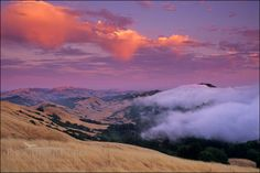 Picture: Fog rolling in over the Oakland Hills at sunset from SF Bay, near Orinda, Contra Costa County, California by Gary Crabbe