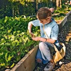 Learn how to grow your #vegetables organically: www.bhg.com/gardening/yard/garden-care/organic-gardening