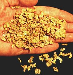 Raw gold nuggets are free form looking and do not have a high shine to them. Only in the finished state (bars or jewelry quality products) does it have that high shine to it.