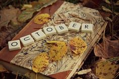 Easy Use Scrabble pieces to decorate with while teaching little ones how to spell the fall months. Harvest Time, Harvest Moon, Fall Harvest, Fall Months, Months In A Year, Autumn Day, Autumn Leaves, Autumn Song, Golden Leaves