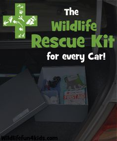 Wildlife Rescue Kit for EVERY car!