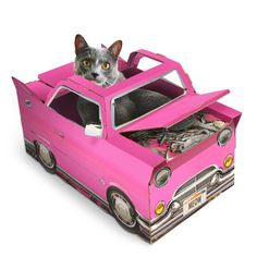 Cat Playhouse Car. You know your cat would sit in it.