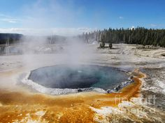"""Hot Spring Yellowstone Photography by Phil WelsherCrested Pool is a hot spring in the Upper Geyser Basin in Yellowstone National Park. The spring is 42 feet (12.8 m) deep. It is named for the """"crest"""" which surrounds the pool."""