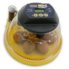 Äggkläckningsmaskin Brinsea Mini Advance 7A. En liten och smidig äggkläckningsmaskin som du hittar hos Lantbutiken.se