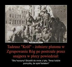 Poland History, Poland Travel, Best Memes, Sentences, Writer, Humor, Funny, Pictures, Life
