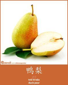 鸭梨 - yā lí - trái lê bầu - duck pear