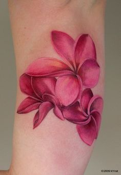 TattooNOW :  - frangipani by Thomas-kYnst: