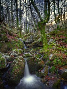 Mountain stream, Magical Forest. Arroyo de montaña. Photo by Angel Calvete Zumalde. Source Flickr.com