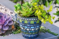 Mosaic Garden Pot - Mosaic Vase - Mosaic Planter - Mosaic Pot in green, teal, and blue colors by KBloomMosaics on Etsy Mosaic Planters, Mosaic Vase, Mosaic Flower Pots, Pebble Mosaic, Garden Mosaics, Mosaic Crafts, Mosaic Projects, Mosaic Ideas, Iridescent Tile