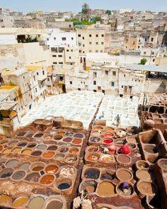 Tannery, Marrakech, Marocco