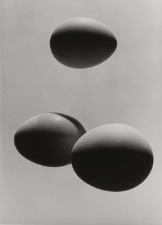 Hans Finsler Three Eggs, Positive 1950