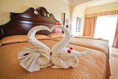 Piegare Gli Asciugamani A Forma Di Animale : 78 immagini incantevoli di animali fatti con gli asciugamani nel