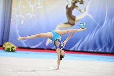 Dina AVERINA (Russia)🇷🇺 ~ Ball @ WC Sofia 2016🇧🇬 😍😍 Photographer 🇷🇺Oleg Naumov.