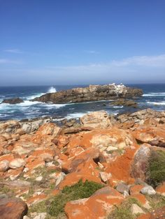 March 5th Robberg Island Hike #CEA #studyabroad #ceaAbroad