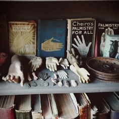 Vintage Palmistry - the pile of detached hand models is a bit creepy. El Canton, The Rocky Horror Picture Show, Cabinet Of Curiosities, Natural Curiosities, Bohemian House, Mystique, Palmistry, Ciel Phantomhive, Macabre