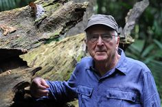 Francis Hallé le rôle des arbres